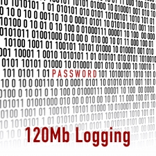 C127 120Mb Logging (L1)