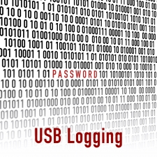 C187 500MB + USB Logging (L2)
